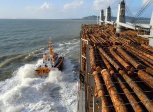 Boats & logship